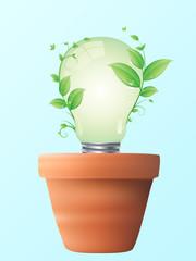 lampada ecologica