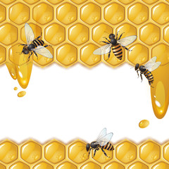 Background with bees, and honeycomb