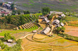 Rice terraced fields in Ta Van village - hill tribe in Sapa, Vie