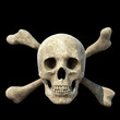 skull and crossbones symbol 3D rendering I