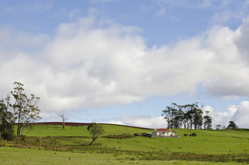 Farm cottage and pasture, near Deloraine, Tasmania