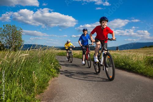 Cyclists - 42016112