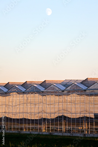Sideview of a greenhouse in the evening