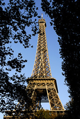 Eiffel tower of Paris among foliages
