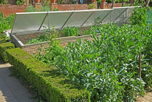 Sadzenia warzyw i podwozie