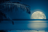 Moon reflected on the water of a tropical beach - 42025142