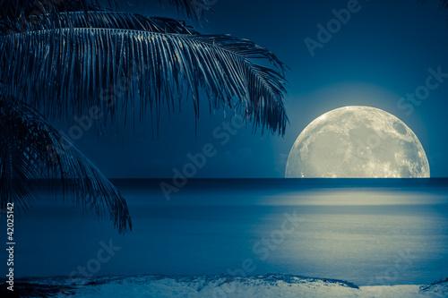 Naklejka Księżyc odbija się w wodzie na tropikalnej plaży