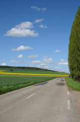 Eure, a country road in Gasny