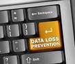 "Keyboard Illustration ""Data Loss Prevention"""