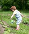 Kind gießt Gemüsebeet