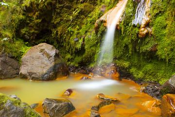 Caldeira Velha - São Miguel - Açores
