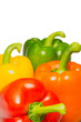 Color peppers on a white background.