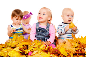 Babies group in yellow leaves