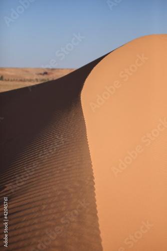Deurstickers Algerije Dünen der Sahara
