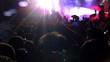 real concert_crowd dance_night