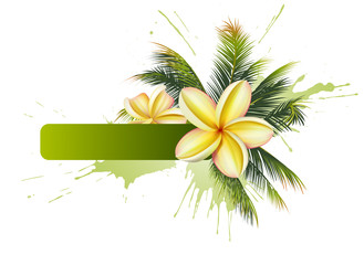 Text frame with palm leaves and plumeria flowers