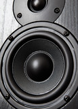 Loudspeaker, black and white close-up photo