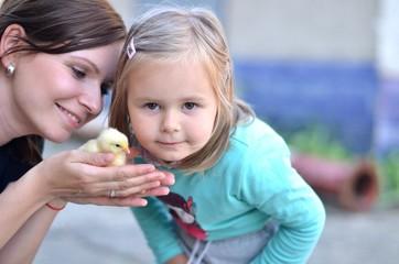 bébé et poulet