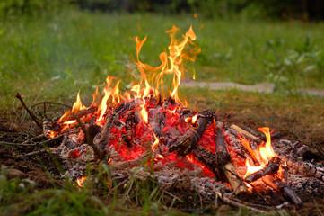 wooden camp fire