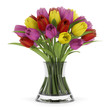 bouquet of tulips in vase isolated on white background