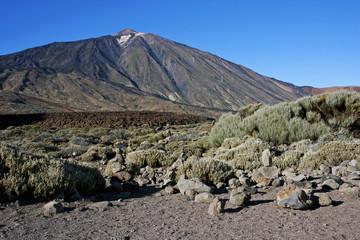 Canadas del Teide 15