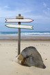 Double directional signs on a beach