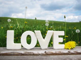 Wort Love in Buchstaben 1