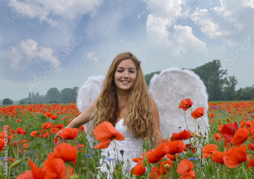 Angel girl in field of red poppies with white feather wings