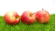 Red Apples on Grass...