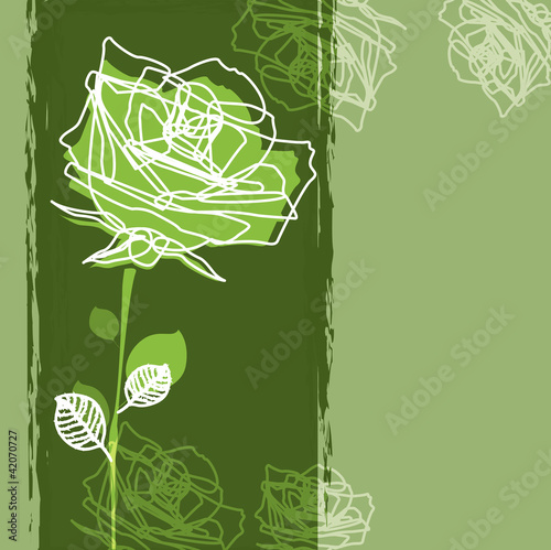 Rose on a green background