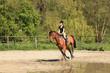 Obrazy na płótnie, fototapety, zdjęcia, fotoobrazy drukowane : beautiful equestrienne on brown horse in summer