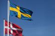 Denmark and Sweden - flags greeting the event