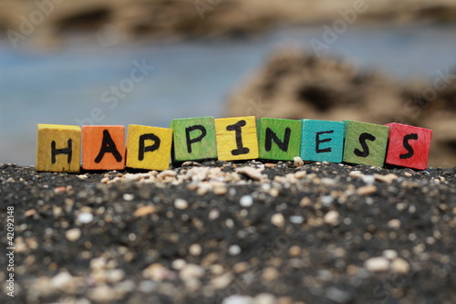 The word Happiness written on wood cubes, at the beach