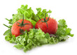 Composition of tomatoes and lettuce on white background