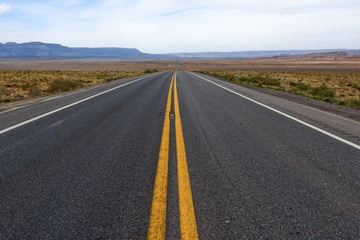 Straight Desert Road