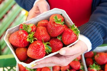 Erdbeeren Verkauf