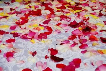 petali - matrimonio