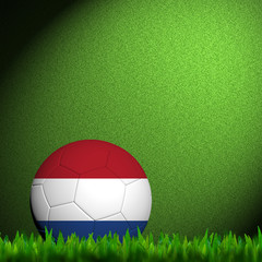 3D Football Netherlands Flag Patter in green grass