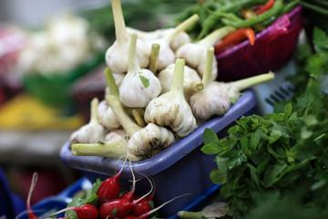 garlics in market
