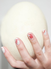 Ostrich egg in the hand