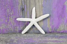 Étoile de mer pourpre sur fond de bois