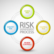 Vector Risk Management Process...