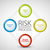 Vector Risk management process diagram