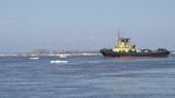 tug boat pushing through ice on a sunny springtime day