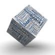 Didaktik Würfel / Cube