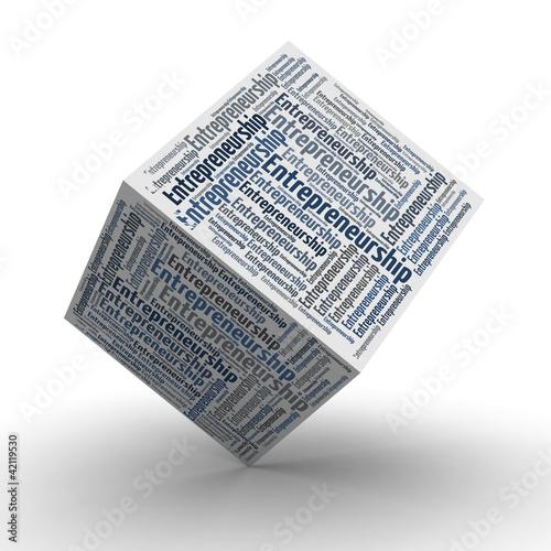 Entrepreneurship Würfel / Cube