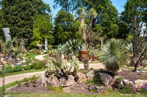Jardin botanique parc de la t te d 39 or lyon photo libre - Jardin botanique de lyon ...