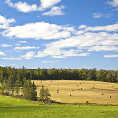 Farm Land on Prince Edward Island
