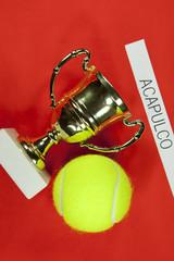 Tennis tournament Acapulco