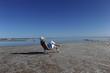 Sexy Woman on salt lake in outback Australia